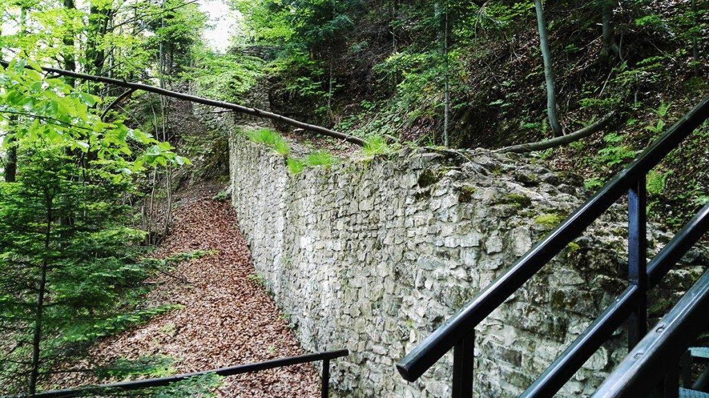Pieniny Trzy Korony. Ruiny Zamku Pieniny