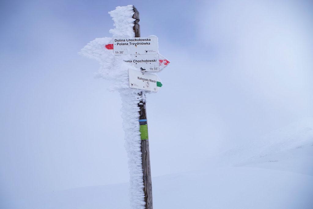 Trzydniowiański Wierch na szczycie