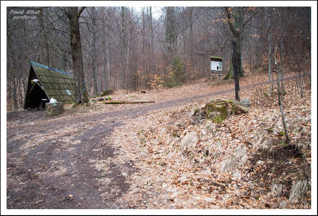 Szlak na Waligórę. Skręcamy w prawo i zmieniamy szlak na zielony