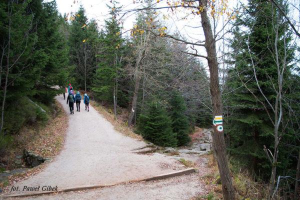 Szlak przez Śnieżne Kotły Szrenica Wodospad Kamieńczyka. Dalsza droga prowadzi najpierw żółtym, potem zielonym i na końcu czerwonym szlakiem
