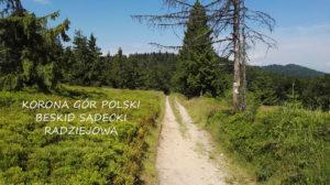 Korona Gór Polski – Radziejowa w Beskidzie Sądeckim