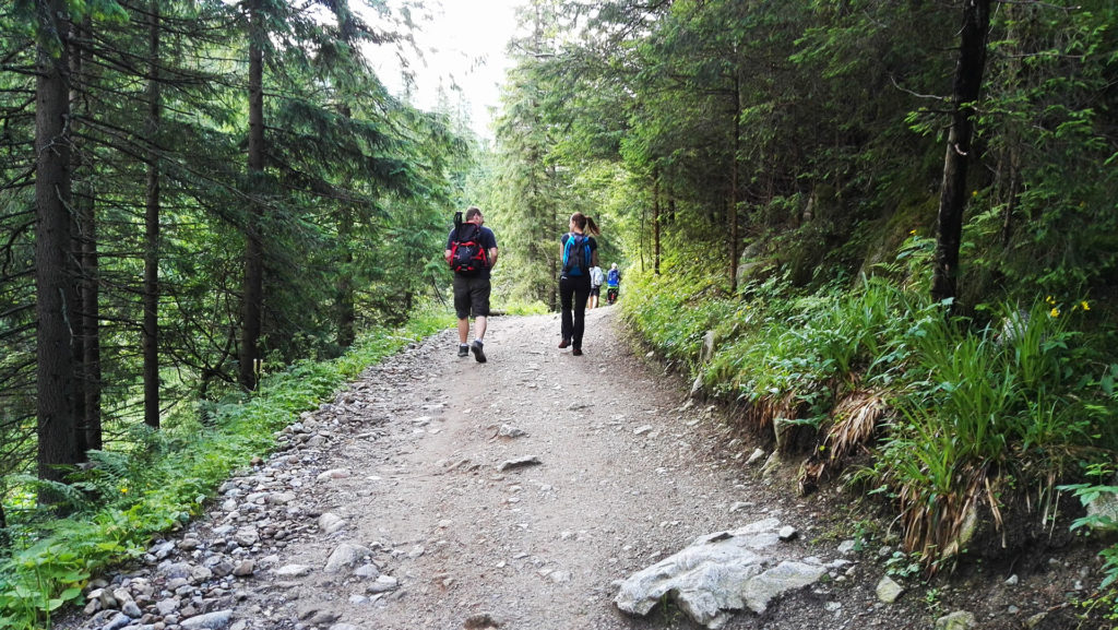 Szlak do Doliny Gąsienicowej przez Dolinę Jaworzynki