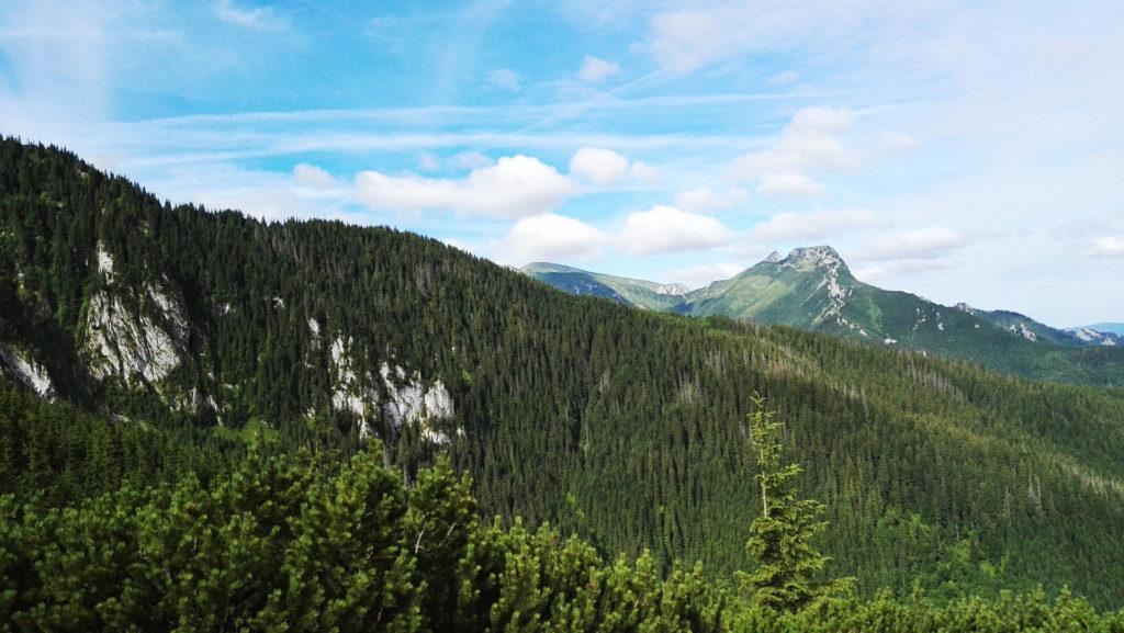 Widok ze szlaku przez Jaworzynkę na Giewont i Tatry Zachodnie