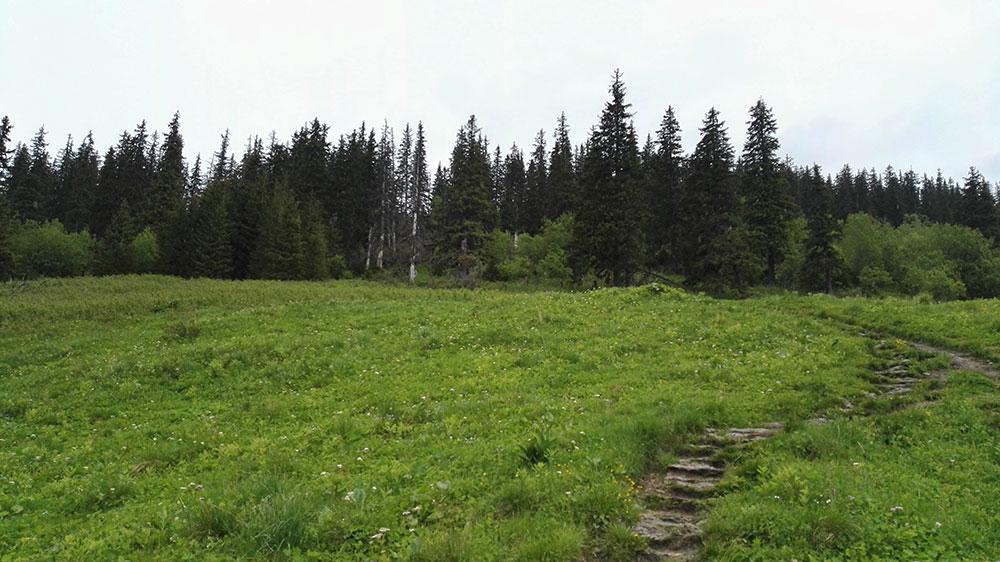 Zejście do Doliny Kościeliskiej