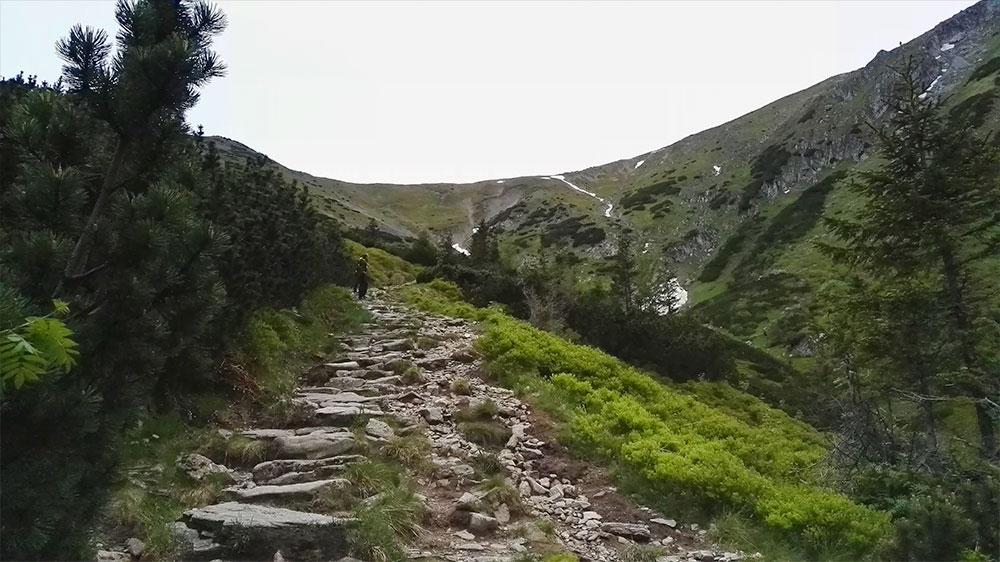 Zakosami wchodzimy na Przełęcz pod Kopą Kondracką
