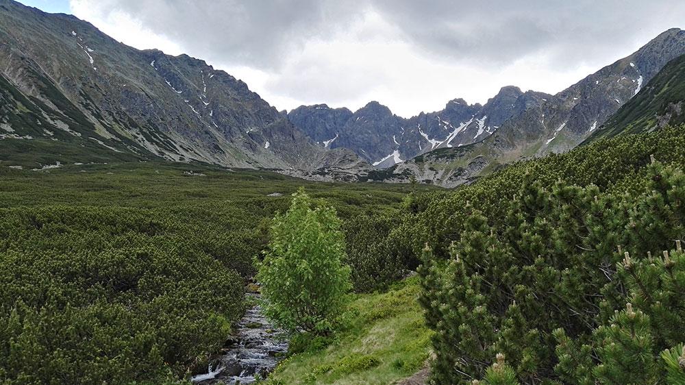 Tatrzańskie doliny. Dolina Pańszczyca