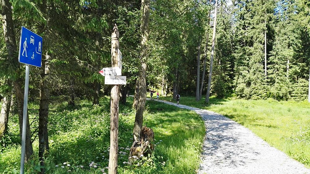 Tatrzańskie doliny. Szlak z Palenicy Białczańskiej na Rusinową Polanę