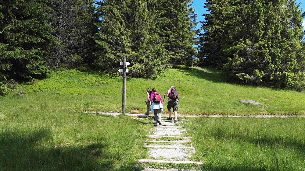 Tatrzańskie doliny. Szlak na Rusinową Polanę
