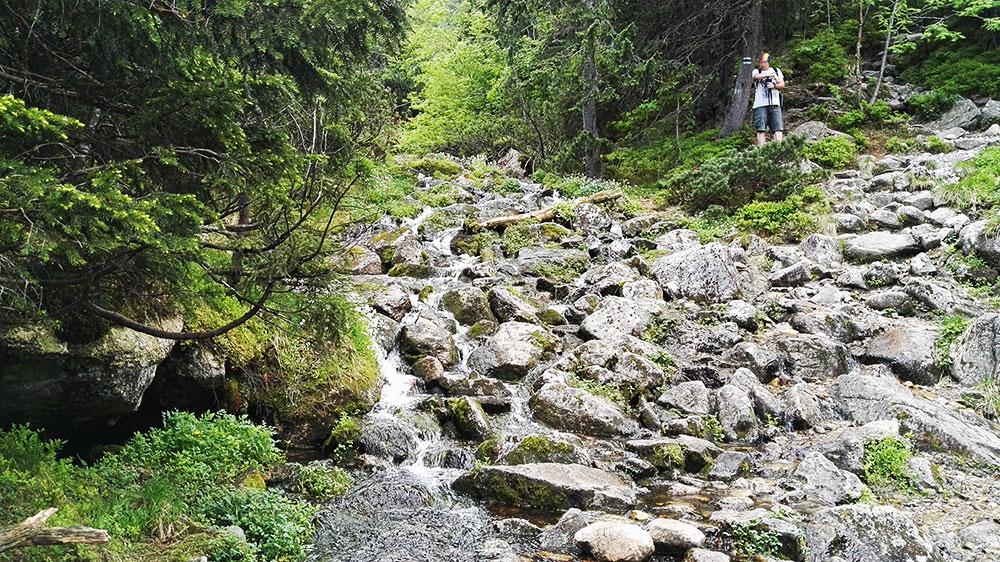 Tatrzańskie doliny. Potok Pańszczycy