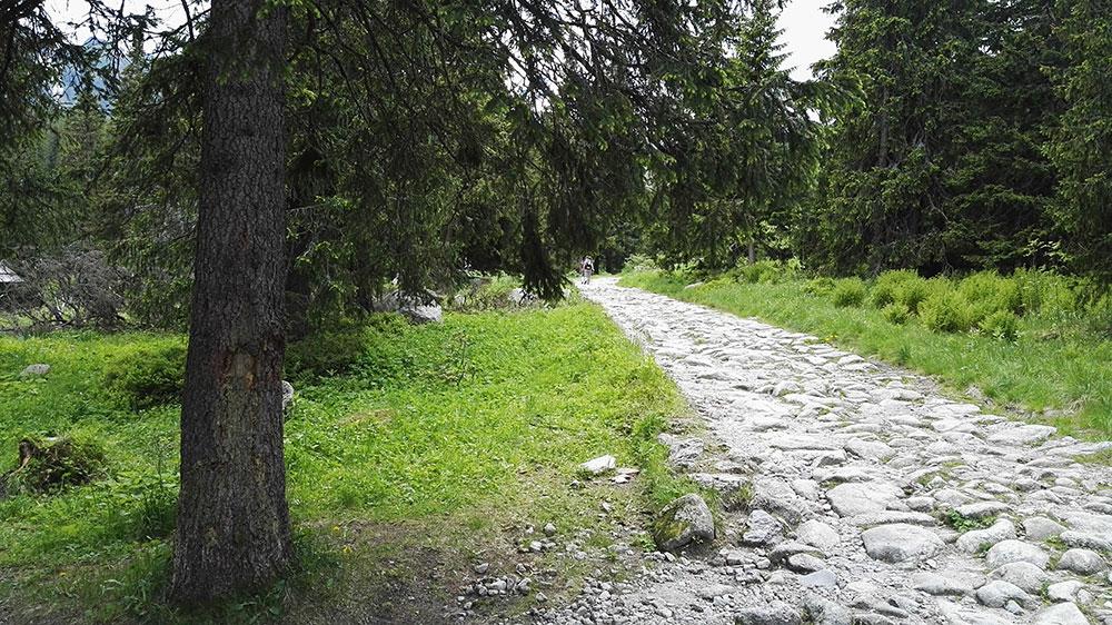 Tatrzańskie doliny. Szlak z Doliny Pańszczyca do Murowańca