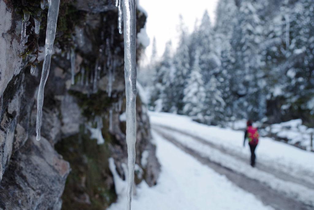 Droga przez Dolinę Chochołowską