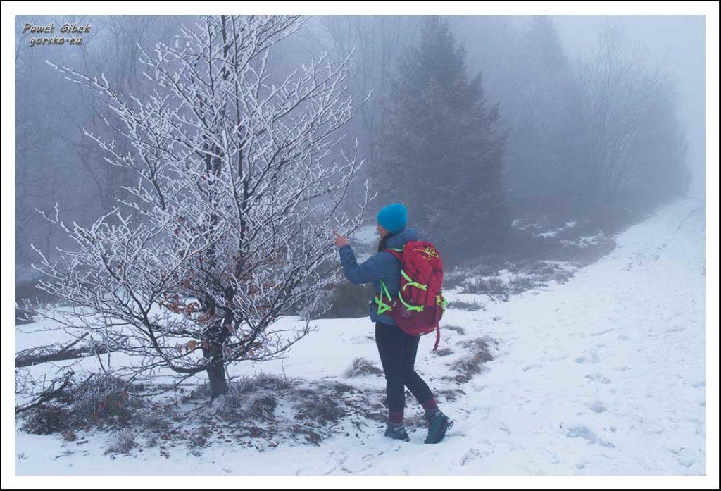Mogielica zimą. Beskid Wyspowy. Czasami mgła też ma pewien urok
