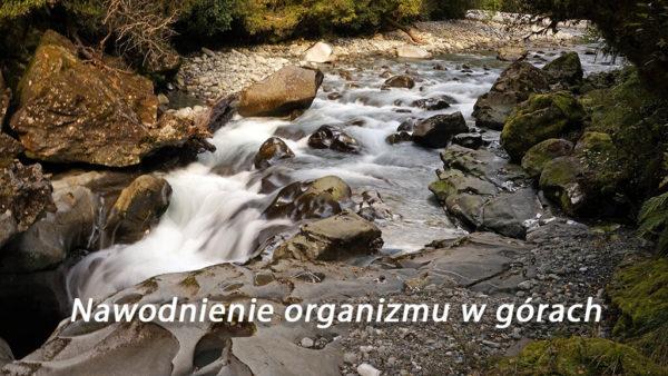 Jak dbać o nawodnienie organizmu w górach?