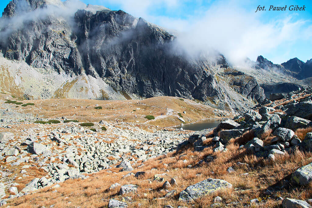 Szlak prowadzi ze Zbójnickiej Chaty, przez Czerwoną Ławkę do Schroniska Téryego