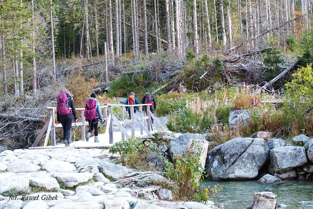 Opis wejścia na Baranie Rogi. Mostek zaraz za rozdrożem Nad Rainerovou chatou