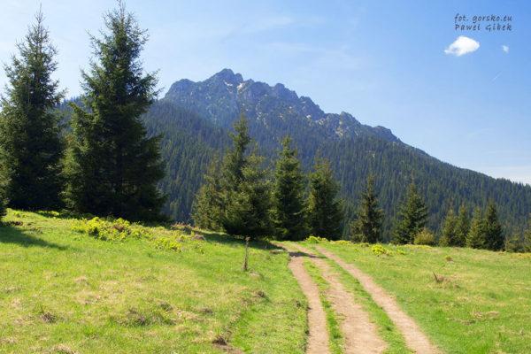 Niebieski szlak przez Janosikowe Diery. Wielki Rozsutec 1609 m
