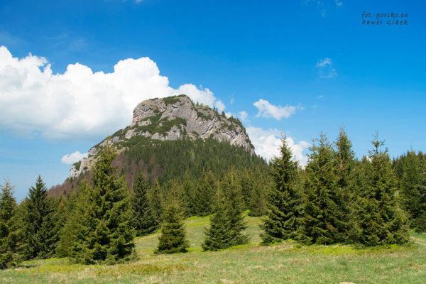 Niebieski szlak przez Janosikowe Diery. Docieramy na przełęcz z której już bardzo dobrze widać Mały Rozsutec 1343 m