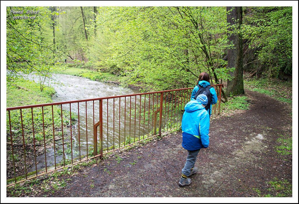Ścieżka-biegnie-wzdłuż-Pełcznicy