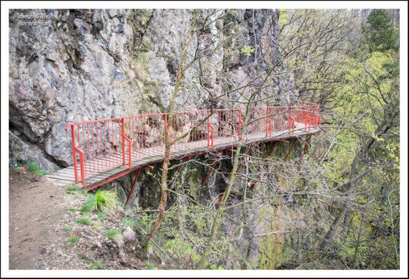 Ścieżka-prowadzi-stromym-zboczem-i-po-licznych-mostkach-3