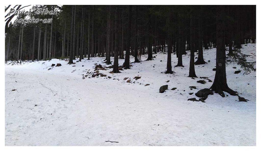 Śnieżnik-zimą.-Na-rozwidleniu-w-lewo