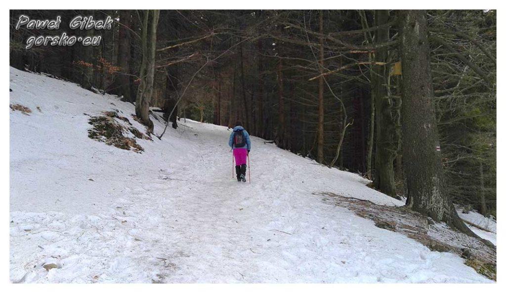 Śnieżnik-zimą.-Ostrożnie-idziemy-w-kierunku-szczytu