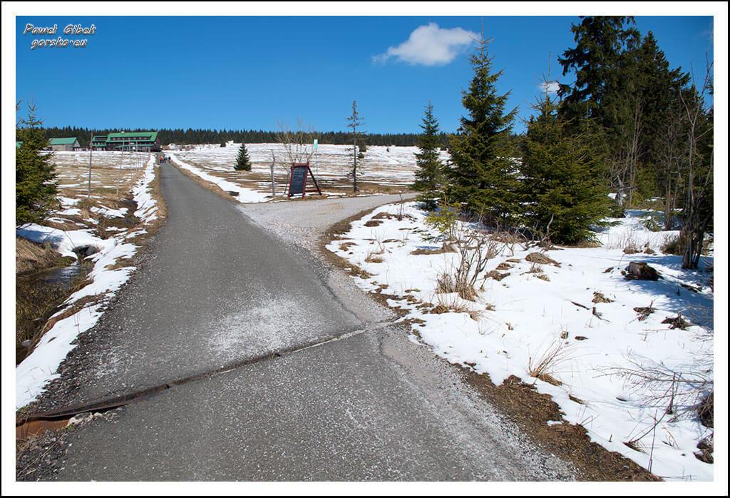Szlak-na-Sniezke-Czechy-Aby-dostać-się-pod-wieżę-widokową-na-Hnědý-vrch-schodzimy-ze-szlaku-na-ścieżkę-po-prawej