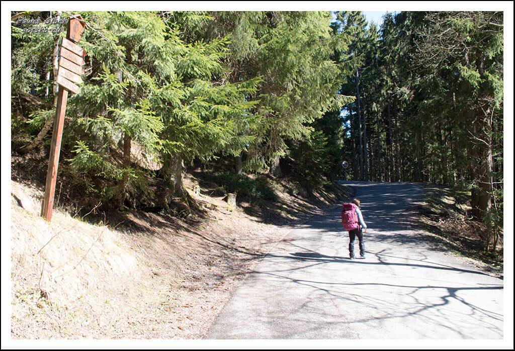 Szlak-na-Sniezke-Czechy-Kierujemy-się-na-schronisko-Lesní-Boudy