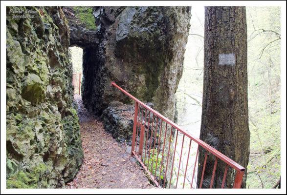 Niewielki-tunel-w-skale