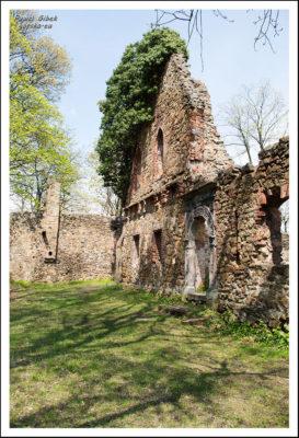 Ruiny-Zamku-Stary-Książ-2