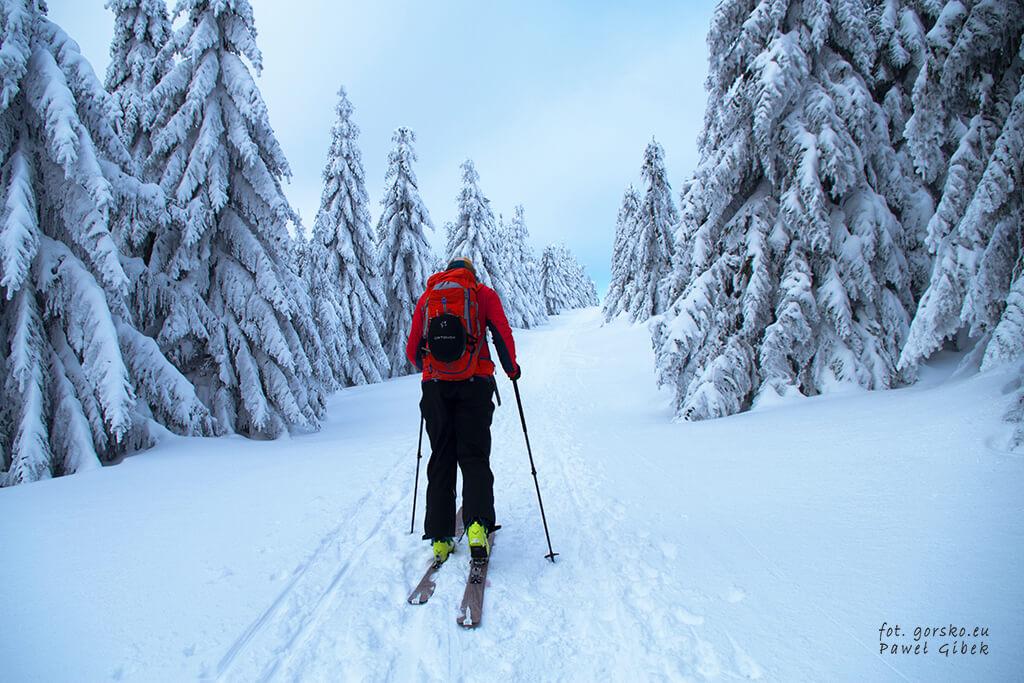 Śnieżka-na-skiturach-szlakiem-czerwonym