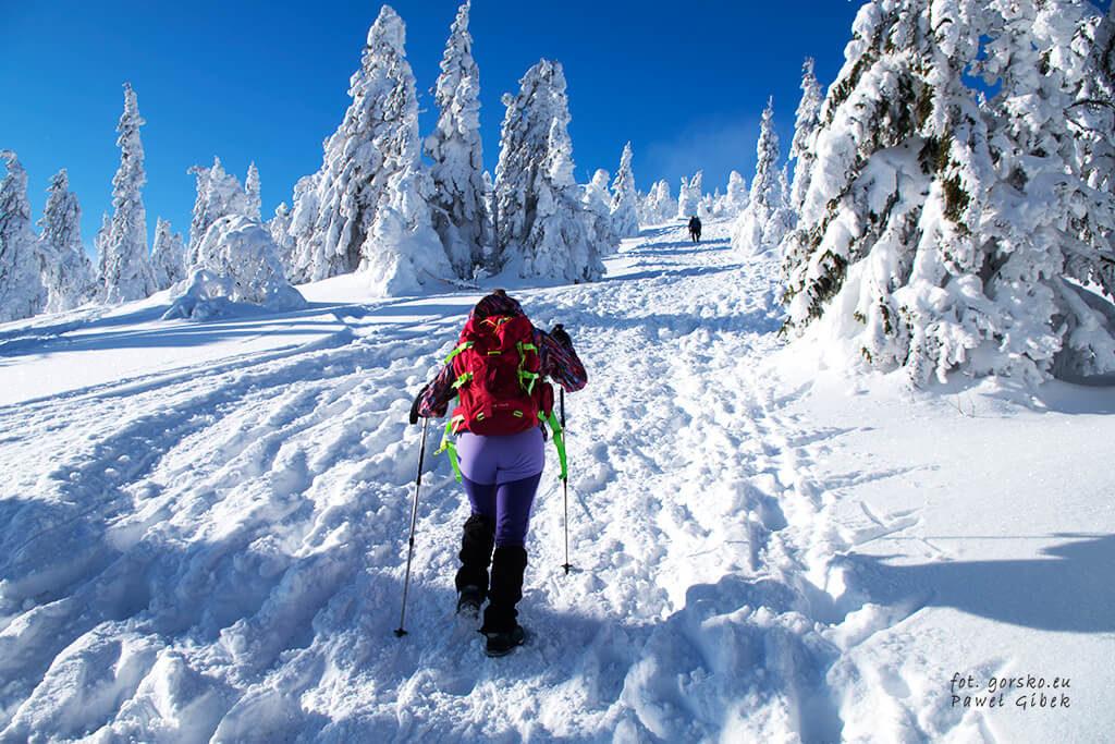 Zimowa-Droga-Przyjaźni-Polsko-Czeskiej