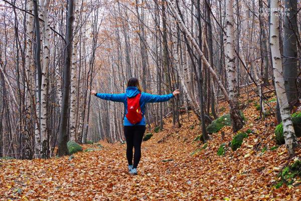 Jesień-w-Górach-Stołowych