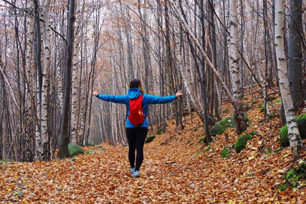 Read more about the article Jaki plecak na jeden dzień w góry?