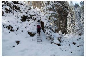 Zwiedź ze mną piękny Wąwóz Kraków i zobacz jak wygląda zimą