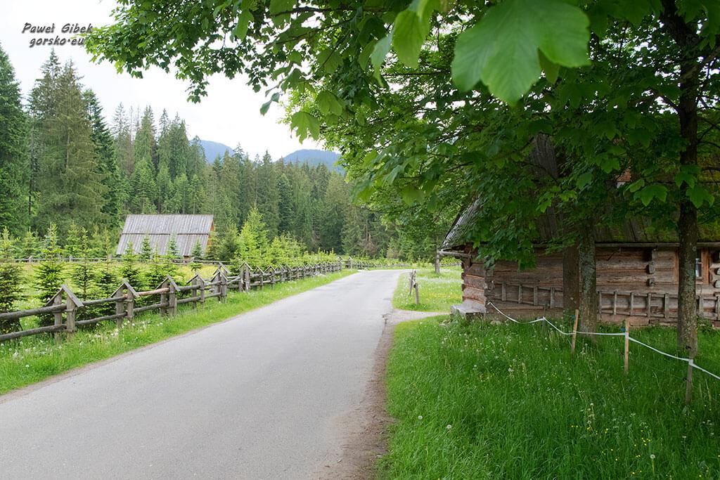 Dolina-Chochołowska
