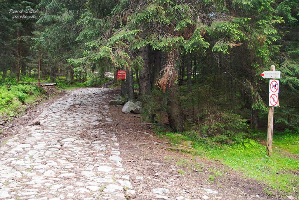Początek-szlaku-przez-Polanę-Trzydniówkę
