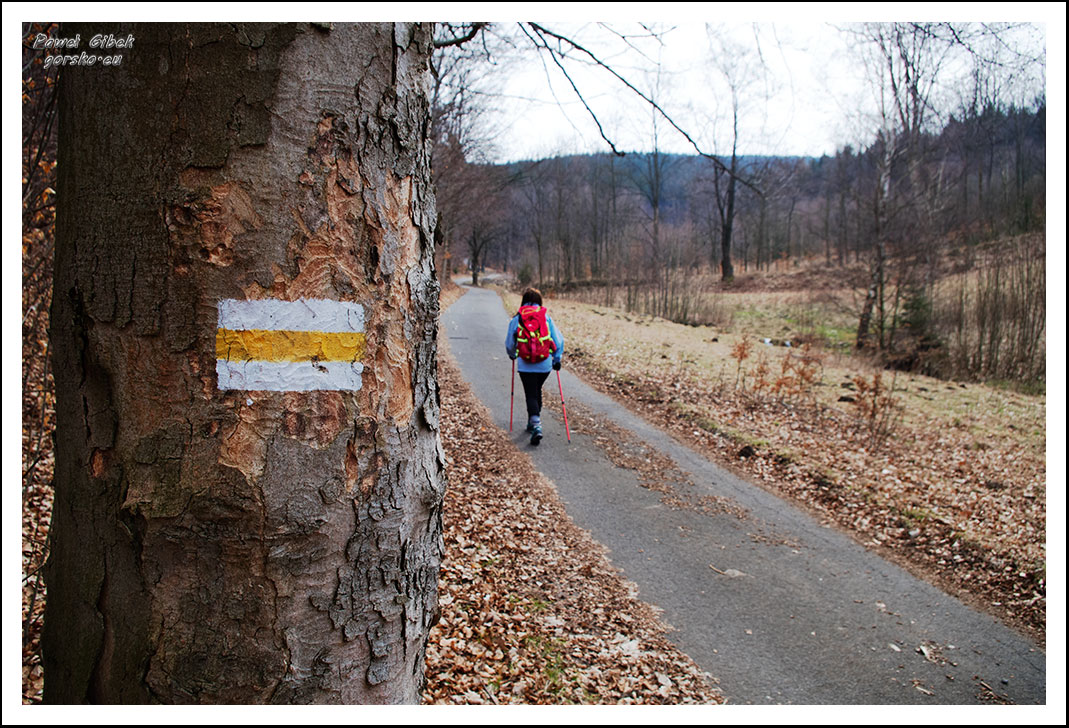 Początek-żółtego-szlaku-na-Wielką-Sowę
