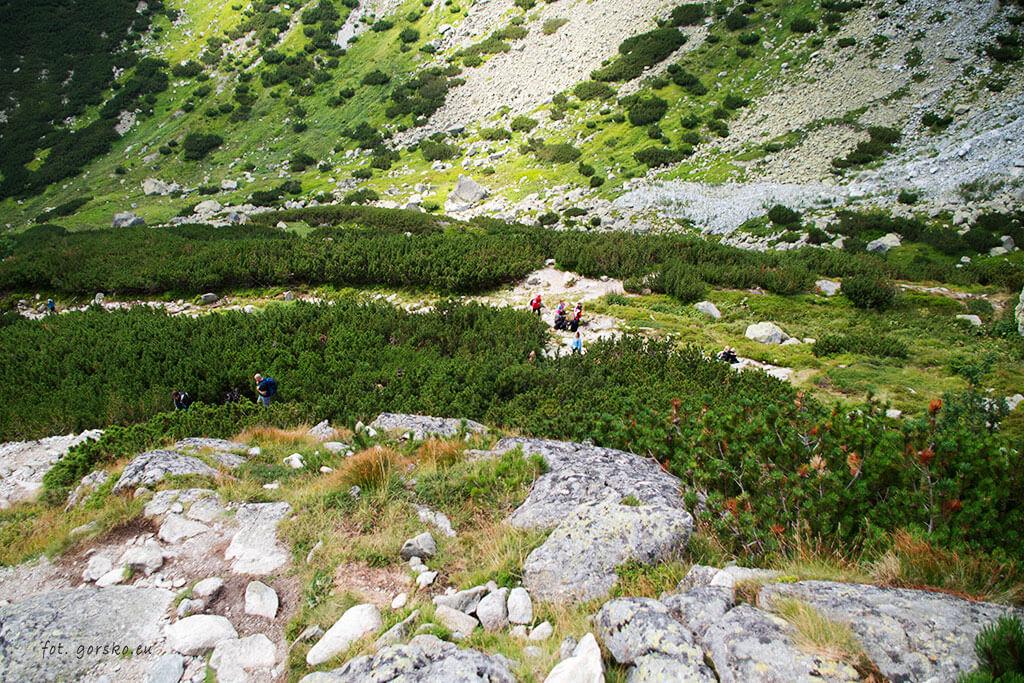 Podejście na próg Doliny Hińczowej inny widok