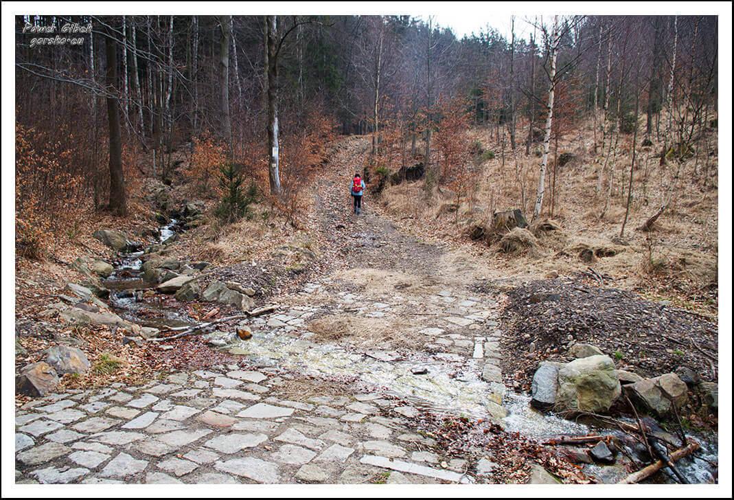 Szlak-z-Walimia-na-Wielką-Sowę