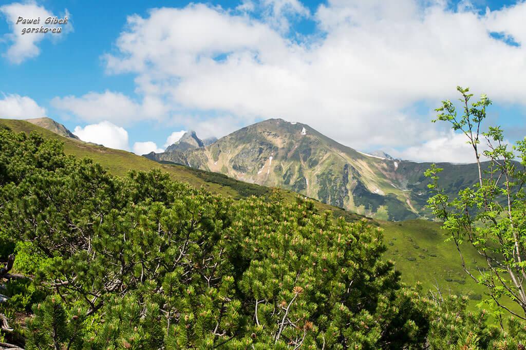 Szlak-na-Starorobociański-Wierch-widok-na-Wołowiec-i-Rohacze