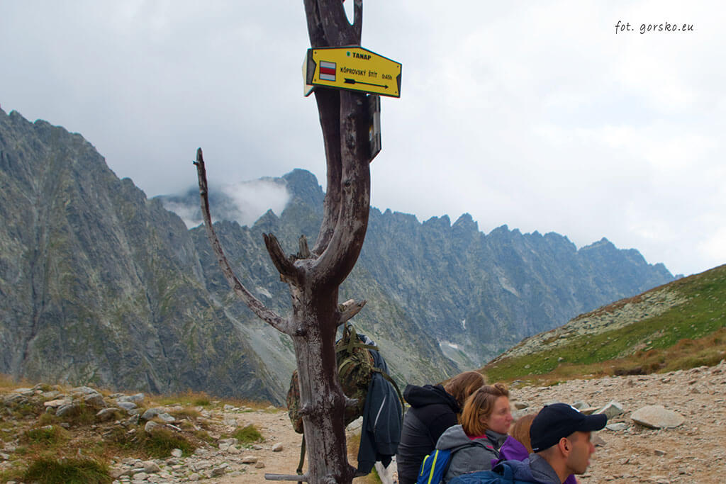 Wyżnia Koprowa Przełęcz