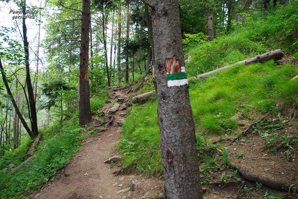 Przełom-Hornadu-zielony-szlak