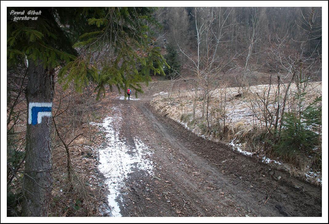 Mogielica zimą. Beskid Wyspowy. Oznakowanie szlaku jest bardzo dobre