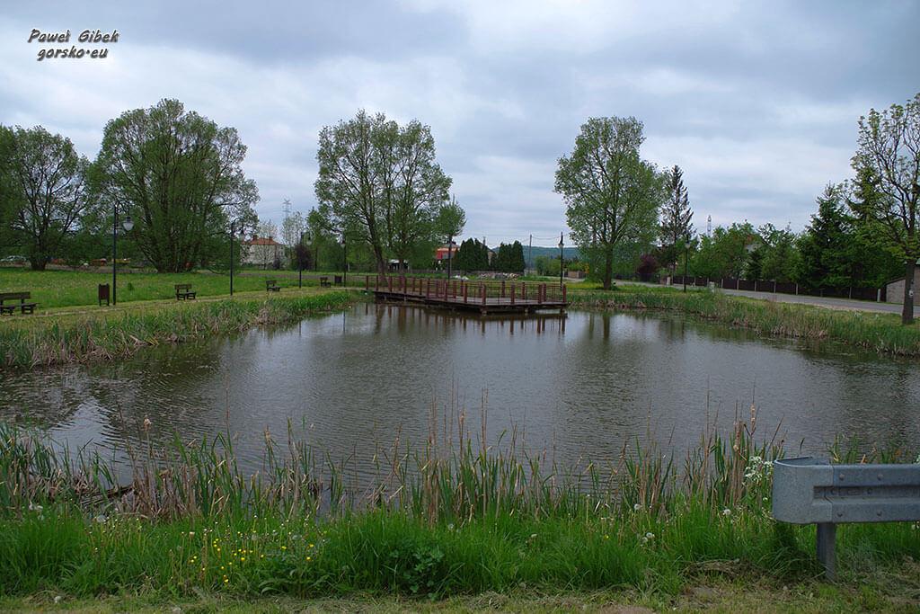 Rowerowy Szlak Orlich Gniazd. Jeziorko przy drodze do rezerwatu Ostrężnik