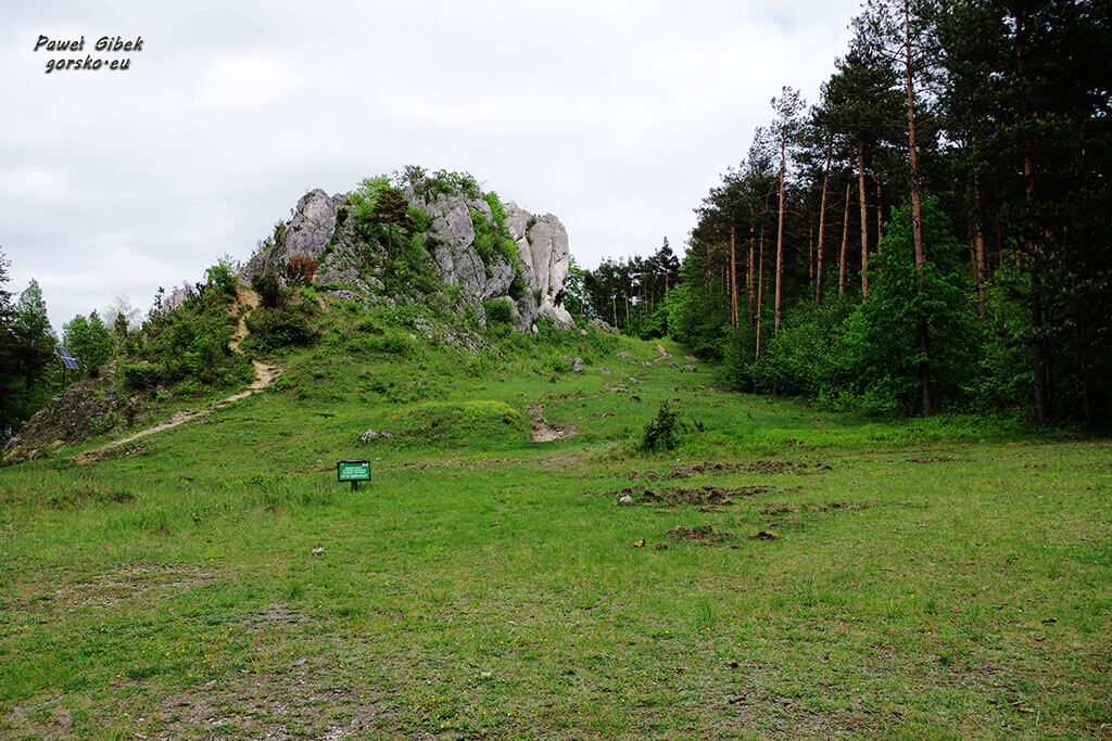 Rowerowy Szlak Orlich Gniazd. Góra Zborów