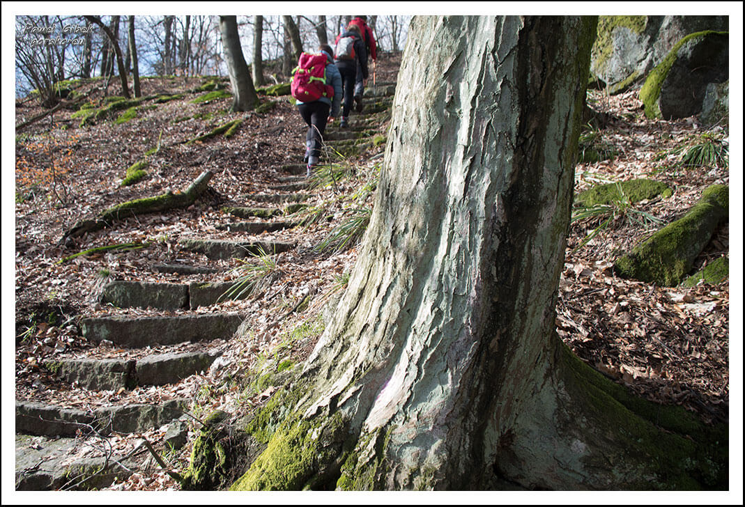 Ślęża-szlaki-kamienne-schody-2
