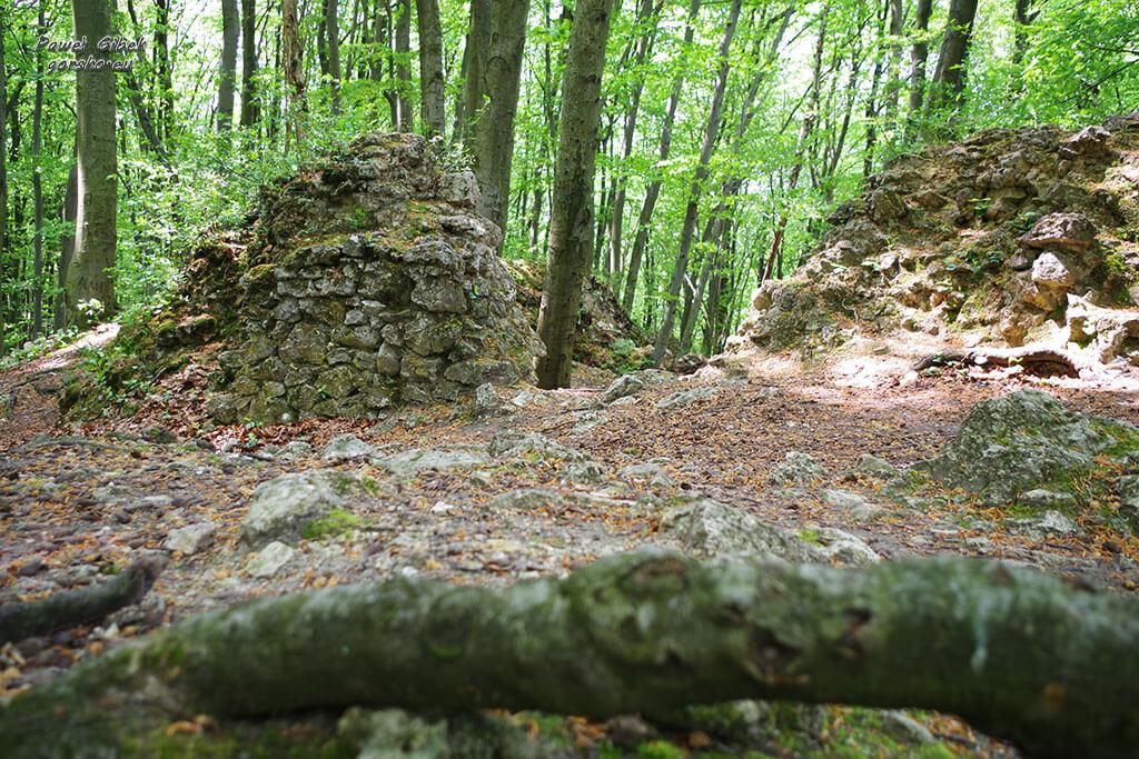 Rowerowy Szlak Orlich Gniazd. Ruiny Zamku Ostrężnik