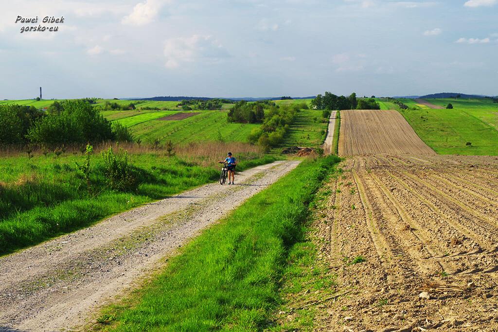Szlak Orlich Gniazd rowerem. Szlak za Olkuszem 2