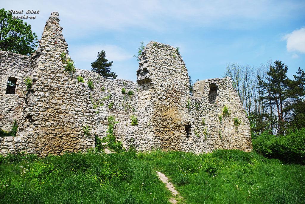 Szlak Orlich Gniazd rowerem. Zamek w Bydlinie 2