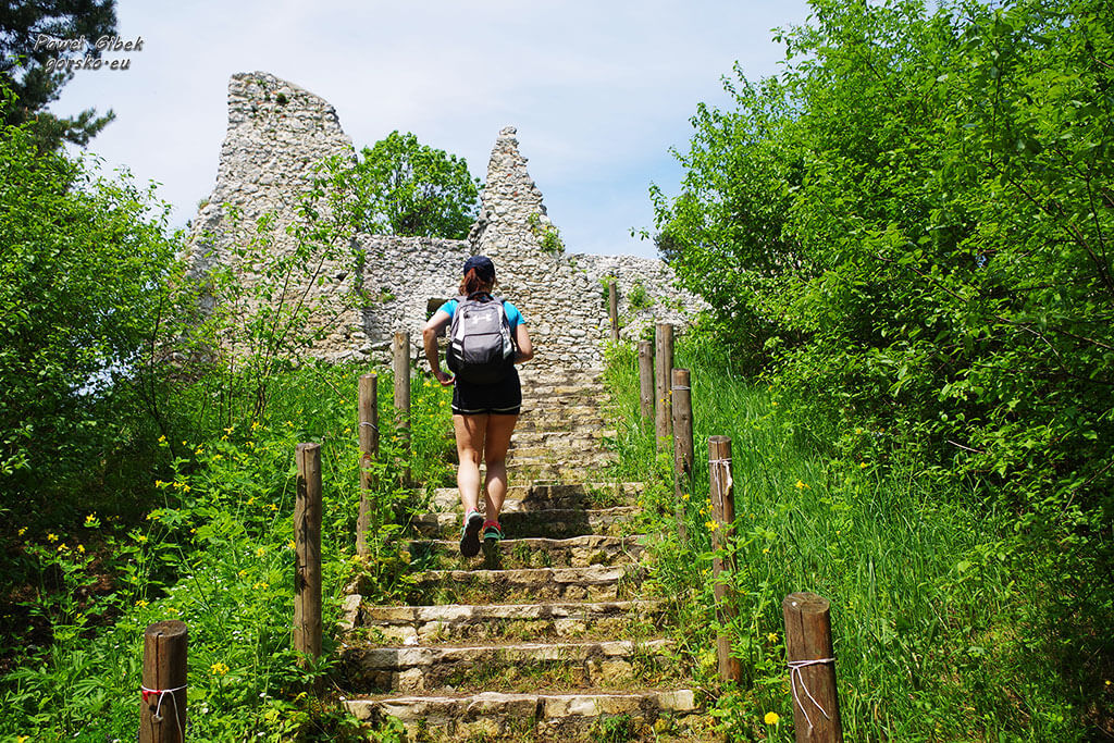 Szlak Orlich Gniazd rowerem. Zamek w Bydlinie